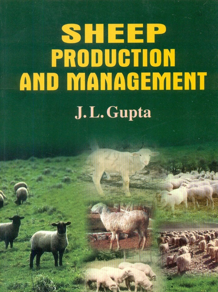 Sheep Production And Management
