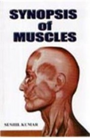 Synopsis Of Muscles